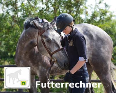 Futterechner pferde